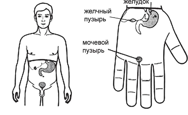 aleksandrova-yuliya-igorevna-foto-golaya