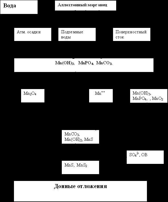 Схема распределения марганца в